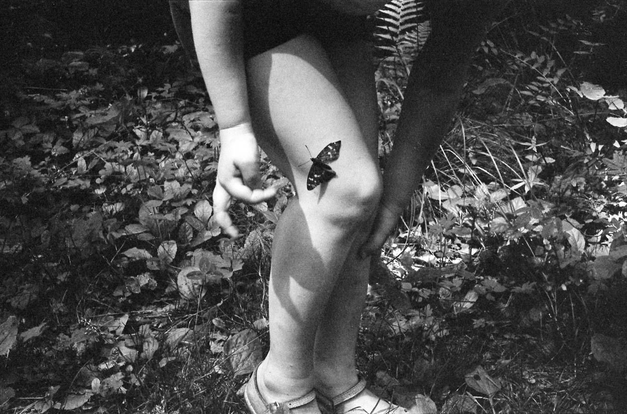 Butterfly, 1970